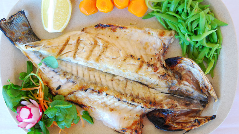 Grilled Fish - Sea Bass or Gilt-Head Bream